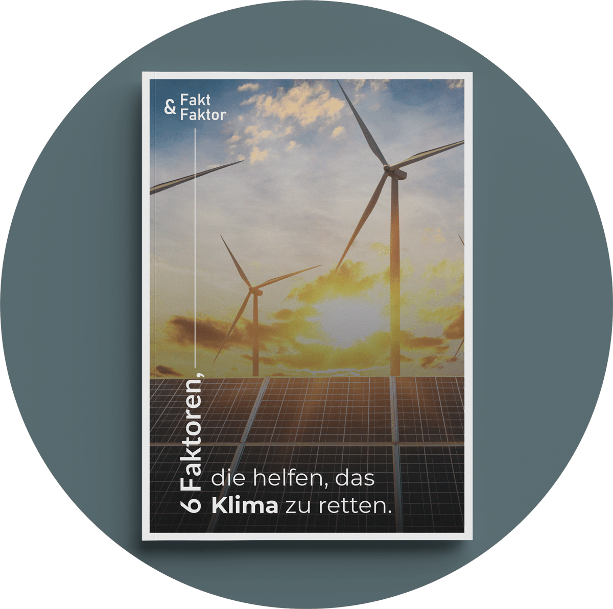 whitepaper 6 faktoren klima - fakt & faktor